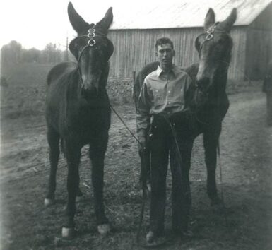 J. L. with his pair of mules